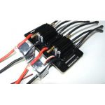 Dual Fiberglass Mount for Seaking 180 V3 Esc
